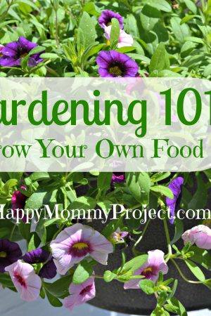 Grow Your Own Food: Herbs 101