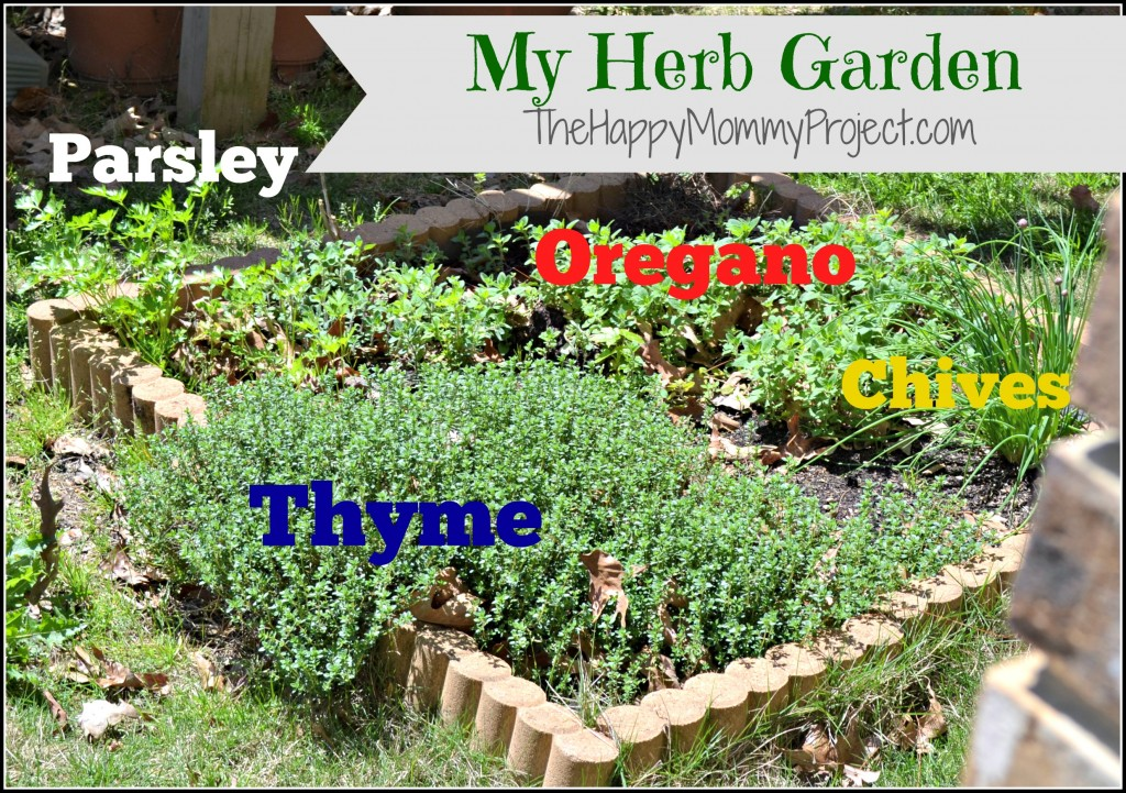 Grow Your Own Food Herbs 101 A Pinch Of Healthy