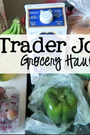 First Ever Trader Joe's Grocery Haul