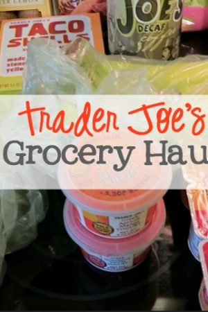 Trader Joe's Grocery Haul Oct 2015
