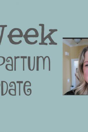 6 Month Postpartum Update