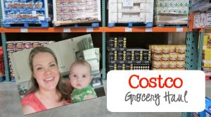 Costco Grocery Haul August 2016