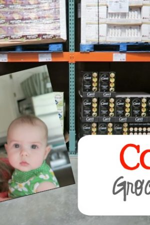 Costco Grocery Haul