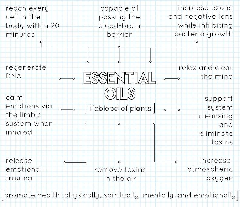 How do essential oils work