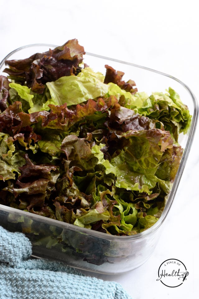red leaf lettuce in glass container on white counter
