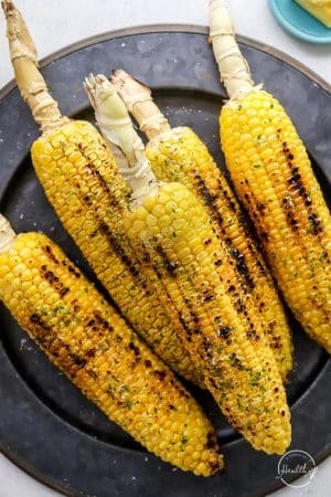 Grilled Corn on the Cob on dark plate with char marks